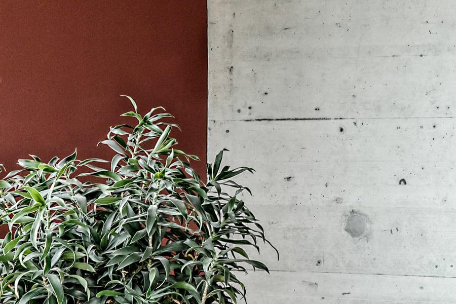 Neubau_EFH_Seeblick_Sursee_Graf_Architektur-125